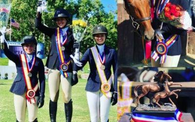 Media Madness: September 2018 – CA Horsetrader Spotlight
