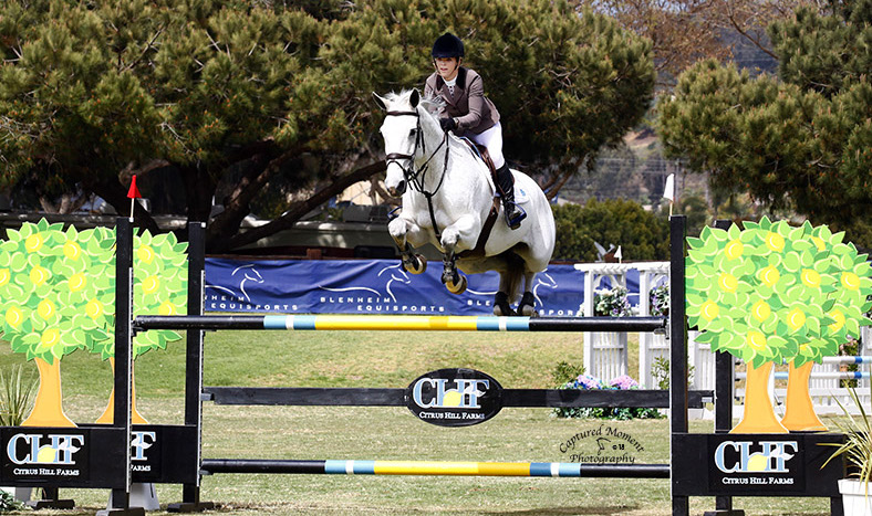 Young Rider Spotlight: Mary Frances Looke