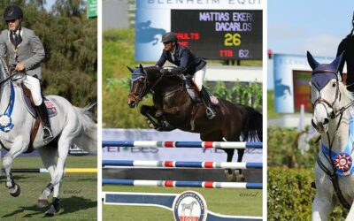 DAY TWO: FEI CSI3* Gold, Silver, and Bronze Tours – Cook, Ekeroth, and Fellers Conquer
