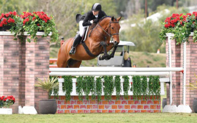Patience Pays Off For Sailor At Blenheim Spring Classic III