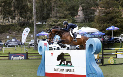 Keri Potter And Jiminy Cricket Claim Their First Grand Prix Win In The FEI CSI2*