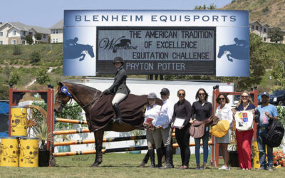 Payton Potter is Champion in The 2019 American Tradition of Excellence Equitation Challenge, presented by Whitethorne