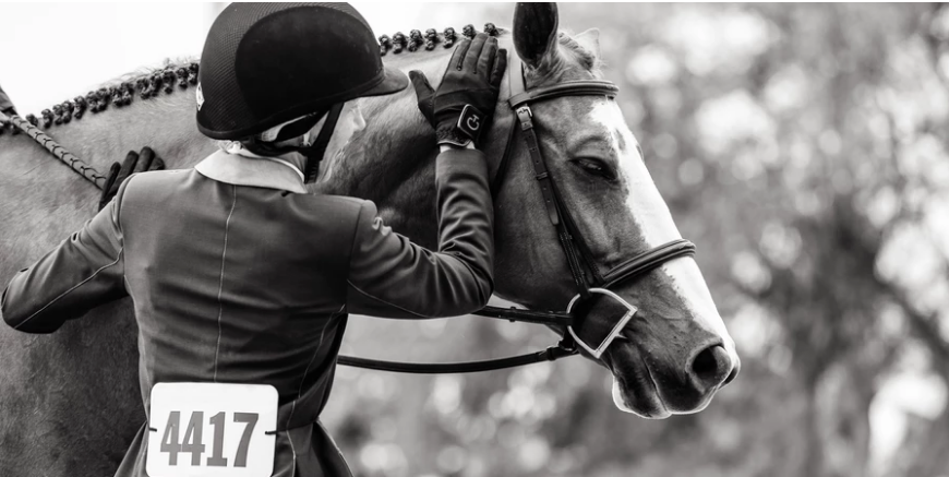 If The Difference Is In The Details, Should Equitation Riders Be Allowed To See Their Scorecard?