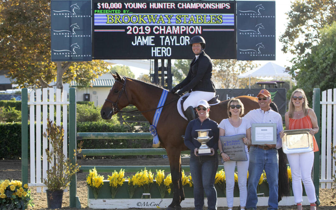 Hail Hero! Champion Of The Blenheim EquiSports Young Hunter Championships, Presented By Brookway Stables
