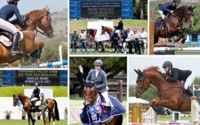 Looking Ahead – A Letter From Robert Ridland; President, Blenheim EquiSports