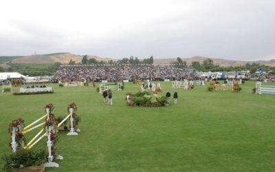 Green Grass Fields and International Aspirations at Blenheim EquiSports