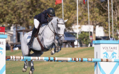 Blenheim Fall Series Starts Wednesday – What You need To Know